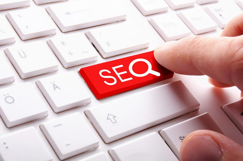 如何判断网站seo优化做的好不好