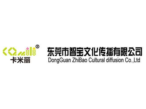 东莞市智宝文化传播有限公司【网站欣赏】